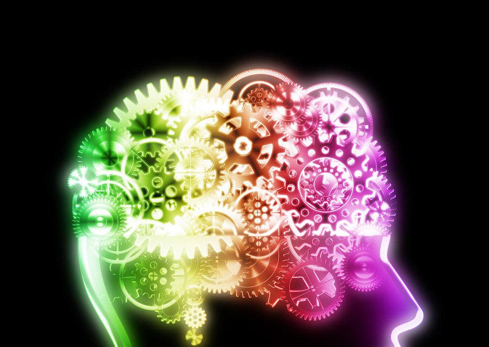sta-je-mozak